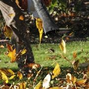 Autumn Care Thumbnail